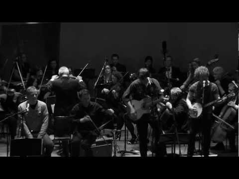 Lymes and the Hull Philharmonic Orchestra - The Fool