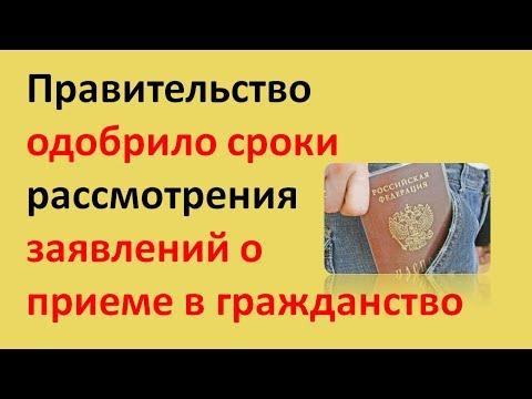 Правительство одобрило сроки рассмотрения заявлений о приёме в гражданство