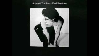 ADAM AND THE ANTS tabletalk (Peel Session) 1979