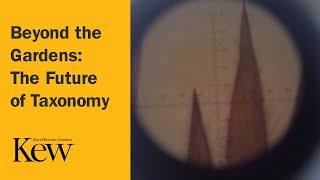 Beyond the Gardens: The Future of Taxonomy
