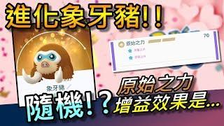 【精靈寶可夢go】pokemon go|進化象牙豬&增益效果實測!結果居然是隨機的!?