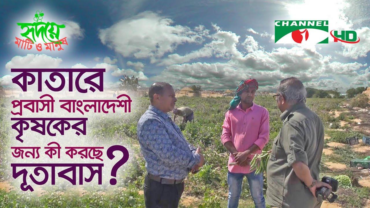 কাতারে প্রবাসী বাংলাদেশী কৃষকের কথা আর দূতাবাসের কর্মকাণ্ড | Shykh Seraj | Channel i |