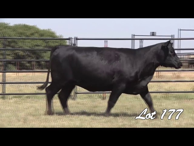 Pollard Farms Lot 177