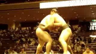 大相撲秋場所3日目 蒼国来さんの勝利です。