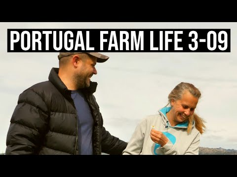 Getting PAID for Owning Agricultural FARM land in Portugal |PORTUGAL FARM LIFE S3-E09 ❤