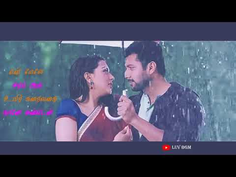 Whatsapp Status Video💕Love Songs💕Thoovaanam💕Romeo Juliet💕LUV BGM