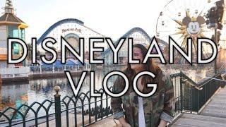 GETTING A BOYFRIEND AT DISNEYLAND! (VLOG) | storiesinthedust