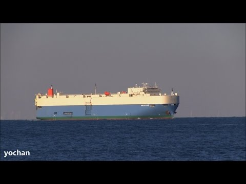 Vehicles Carrier / Ro-ro ship: SALVIA ACE (MOL Shipmanagement Singapore, IMO: 9338876) Underway