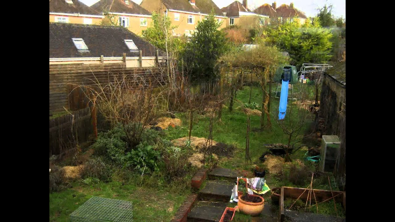 Forest garden - four and a half year timelapse - YouTube