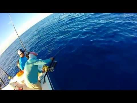 Swordfishing With Far Out Charters