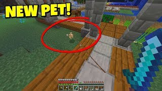 my-new-minecraft-pet-what-s-his-name