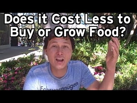 Does it Cost Less to Buy or Grow Your Food? & More Gardening Q&A