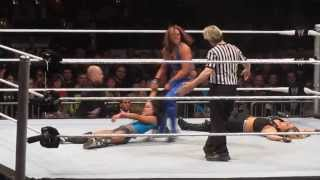 Download Kaitlyn vs Aj Lee vs Tamina MP3 song and Music Video