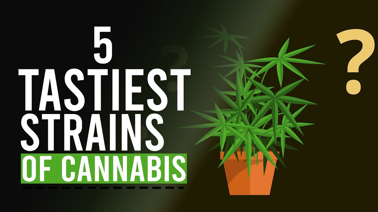5 Tastiest Strains of CANNABIS!