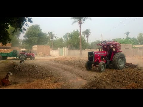 Tractor Power Massey Ferguson 385 Ploughing in Farms | Punjab Village