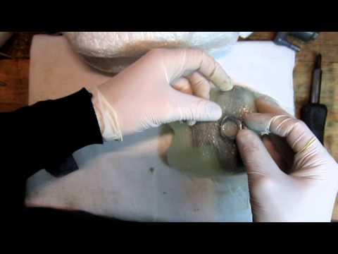 Бак из стеклопластика своими руками