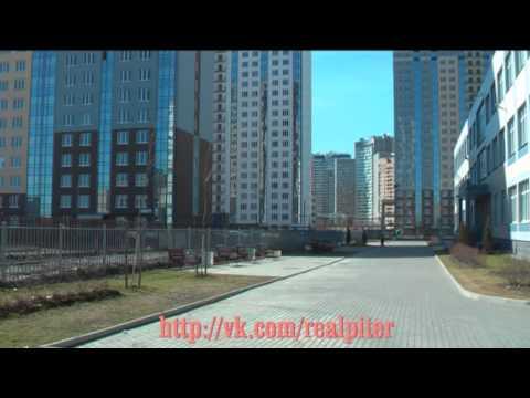 Школа 655, Богатырский проспект 50 корп 2, Приморский р-н, Спб, 21.04.2013