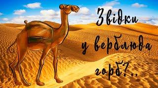 Звідки у верблюда горб   Казки на ніч   Редьярд Кіплінг   Аудіоказки з картинками