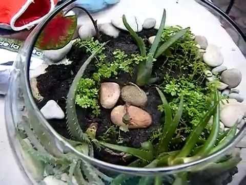 C mo hacer un terrario youtube - Como preparar el jardin ...