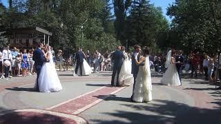 Весільний парад в Новій Водолазі