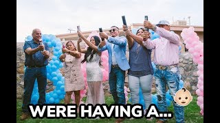 Download OUR GENDER REVEAL! *EMOTIONAL* 😭 Mp3 and Videos