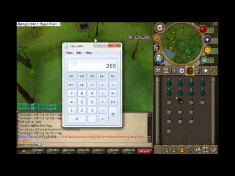 hunting red chinchompa guide 20112012 fast way to gain xp