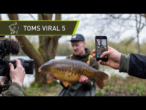 TOMS VIRAL 5