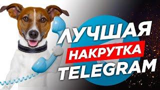 Купить Телеграм подписчиков, Телеграм бизнес, продвижение Телеграм канала