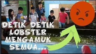 5 Children Pertama kalinya liat LOBSTER GEDE...