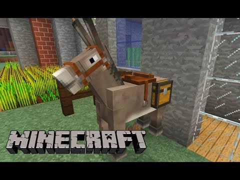 Minecraft Survival - Meu Burro Favorito (feat Canal C)