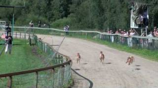 08.08.2009 at Hyvinkää racing track.