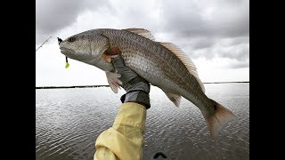 Catching Mud Donkeys In 9 Inches Of Water, Texas Marsh Fishing