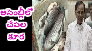 fisheries department in telangana