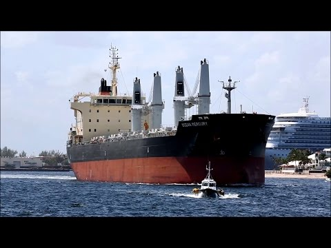 Bulk Carrier | OCEAN MERCURY