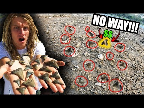 We Hit Shark Tooth JACKPOT!! (How To Find Shark Teeth In Florida) Megalodons