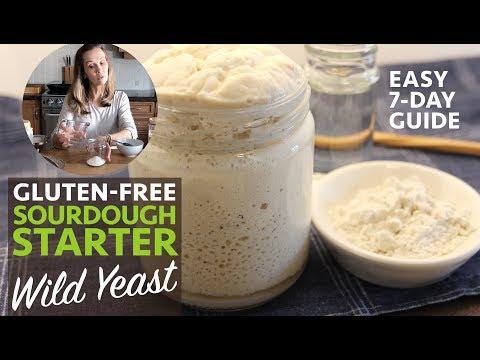 Easy Gluten-Free Sourdough Starter Guide Part 1