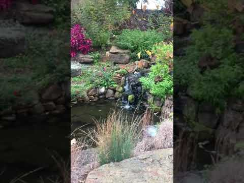 Botanical Garden , Linnaeus Teaching Garden . - YouTube