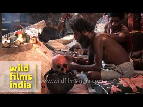 Aghori nurses his skull, and nourishes it with booze! - YouTube