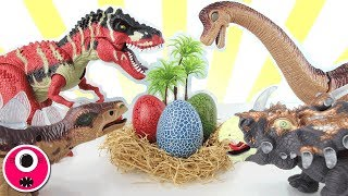 Who's Dinosaur Eggs? 4D PUZZLE, Transforming Dino Eggs! T-Rex, Brachiosaurus, Triceratops! 공룡 알 변신 thumbnail