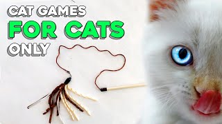 Cat Games for Cats Only