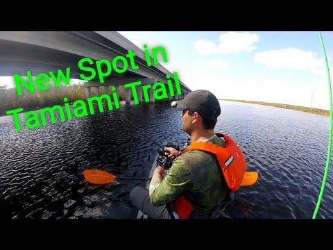 Fishing New Spot In Tamiami Trail