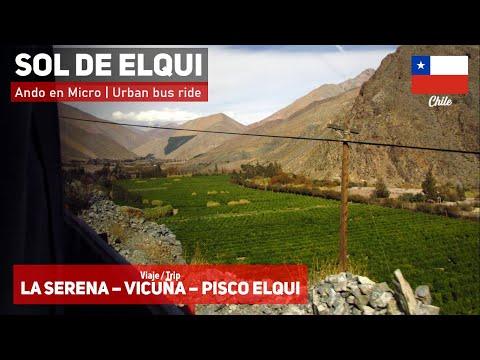 Ando en Micro | Viaje La Serena - Vicuña - Pisco Elqui (Valle del Elqui) + Bus Mascarello Roma MD