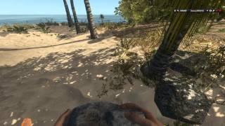 Краткий обзор игры Stranded Deep