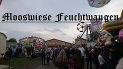 Mooswiese Feuchtwangen Reportage 2017