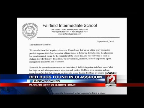 Bed bugs found in Fairfield School have parents concerned