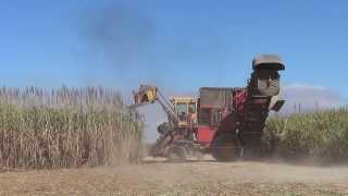 Sugar Cane Harvester in Australia