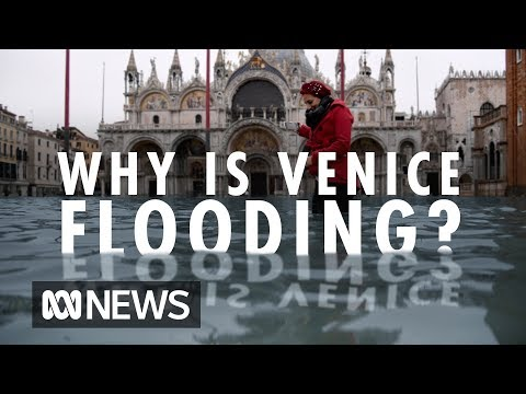 Why is Venice flooding? | ABC News