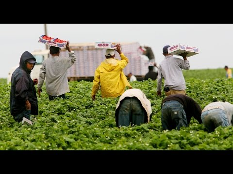 """ANOTHER Study Confirms Immigrants Aren't """"Taking American Jobs"""""""