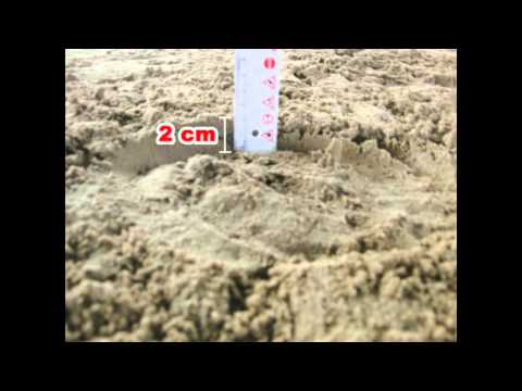 Super Reitsand Nordsand als Reithallenboden.mpg - YouTube SA12