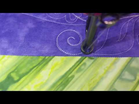 Whimsical flower butterfly swirl leaf border freemotion quilting hand guided